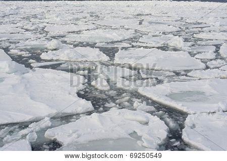 Drift Ice In Abashini, Japan