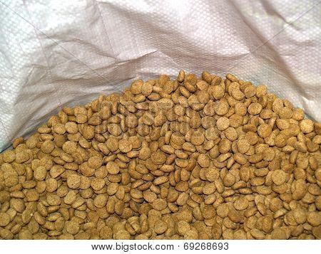 Dry dog's food