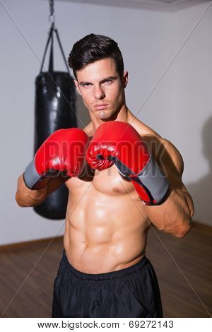 Portrait of a shirtless muscular boxer with punching bag in gym