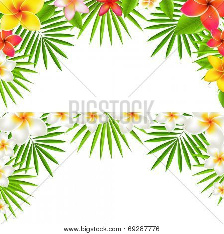 Tropical Flowers Border Set, With Gradient Mesh, Vector Illustration