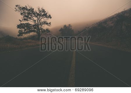 Odd Foggy Road