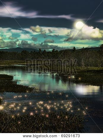 Forest And Fireflies