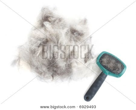 Dog Grooming Brush And Hair