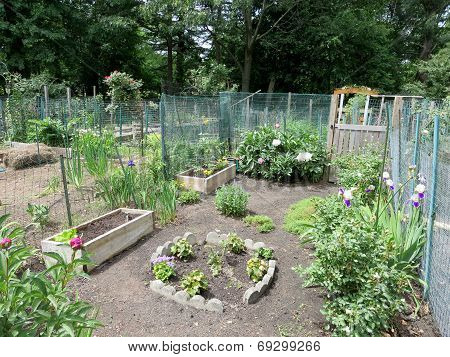 Boston Community Garden