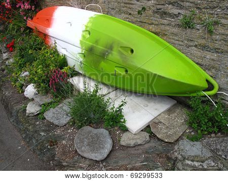 Surfboard And Flowers