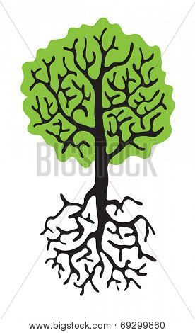 green tree with roots isolated on white background, vector illustration