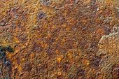 picture of oxidation  - Rusty old brown oxidized metal grunge background - JPG