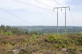 stock photo of power transmission lines  - Power line in the forest land - JPG