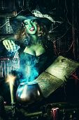 picture of wizard  - Fairy wicked witch in the wizarding lair - JPG