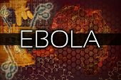 foto of viral infection  - Ebola virus illustration with a map and microscope - JPG
