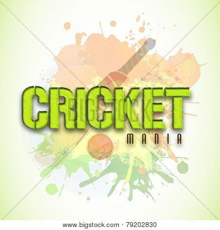 Stylish text Cricket Mania with bat and ball on color splash background, can be used as poster or banner design.