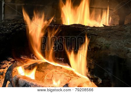 Trunk Burning In A Fireplace