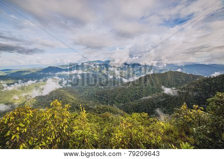 Mist and cloud at Tropical Mountain Range