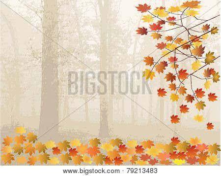Autumn Leaves and forest - vector illustration