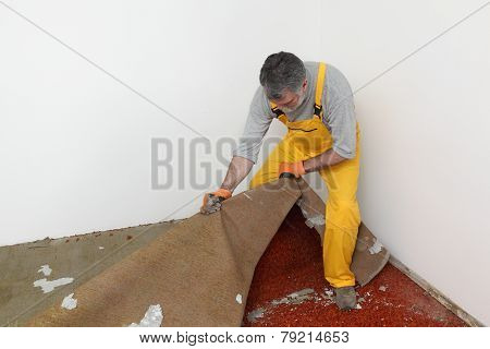 Home Renovation, Carpet Remove