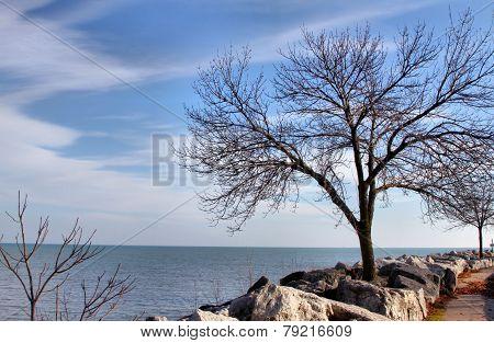 A Walk by Lake Michigan