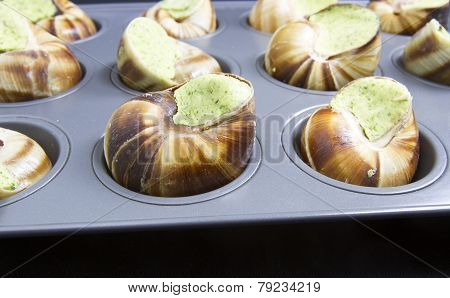 Stuffed Escargot Ready To Bake