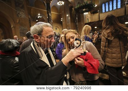 Rabbi Peter Rubinstein blesses small dog