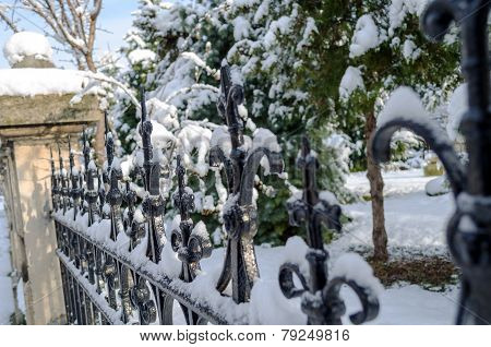 Old Snow Fence