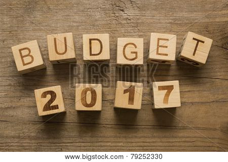Budget for 2017, wooden blocks on a wooden background