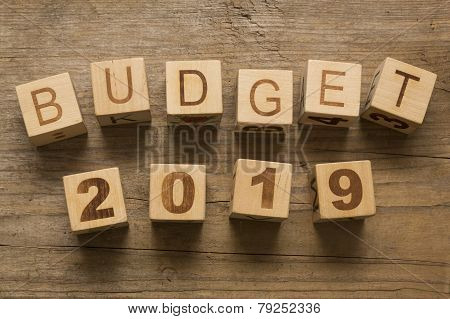 Budget for 2019, wooden blocks on a wooden background