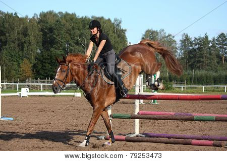 Brunette Woman Show Jumping On Brown Horse