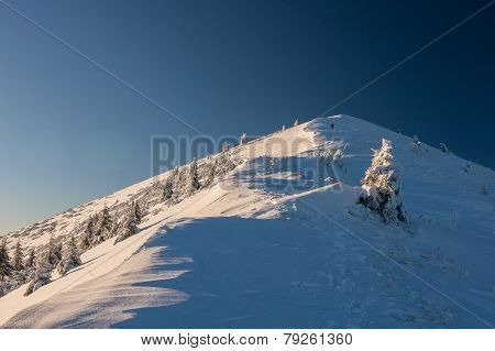 Sunny Morning In The Mountains