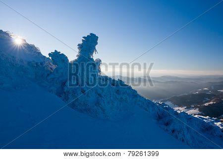 Sunny Morning On A Mountain Ridge