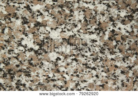 Textured Background Of Mottled Black, White, Brown Spots.  - Stock Image