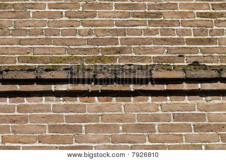 Brick And Moss