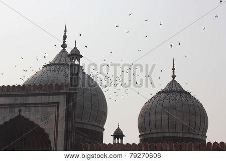 Jama Masjid Of Delhi, domes