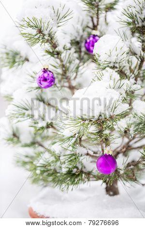 Snowy Christmas Tree.