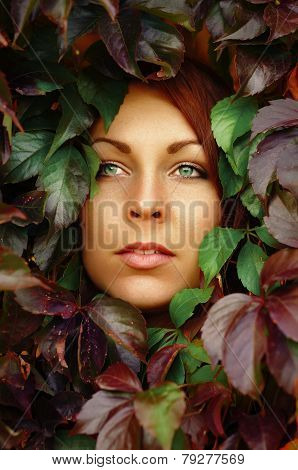 Face Of Beautiful Redheaded Woman In Leaves