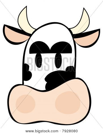 Funny dairy cow face.