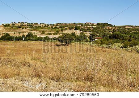 Italian Landscapes Calabria