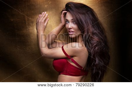 Sensual Brunette Woman Posing In Lingerie.