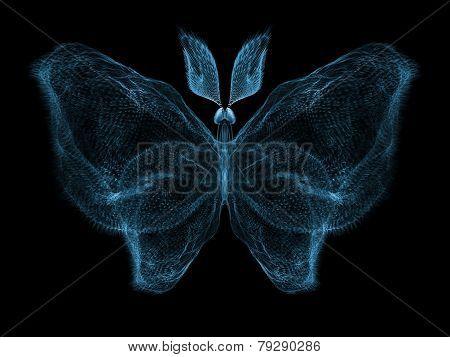 Butterfly Elegance