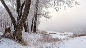 image of siberia  - December - JPG
