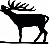 picture of roebuck  - Vector illustration of  black silhouette stag on white background - JPG