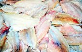 stock photo of catfish  - Louisiana catfish displayed fresh from the waters cleaned and sliced - JPG
