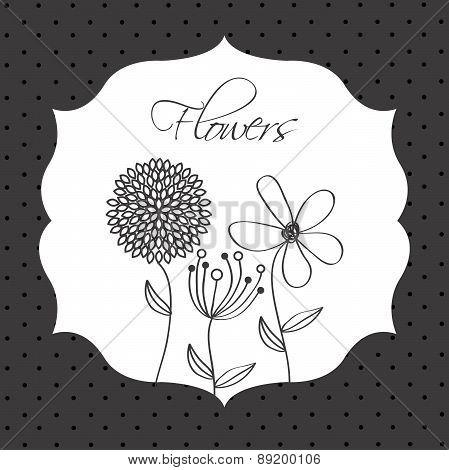 flowers design over   dotted  background vector illustration
