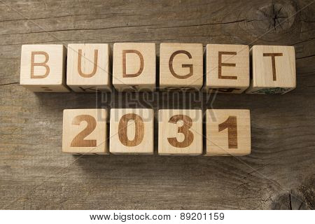 Budget for 2031 wooden, blocks on a wooden background