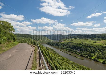 Country Road And Vineyards Along German River Moselle