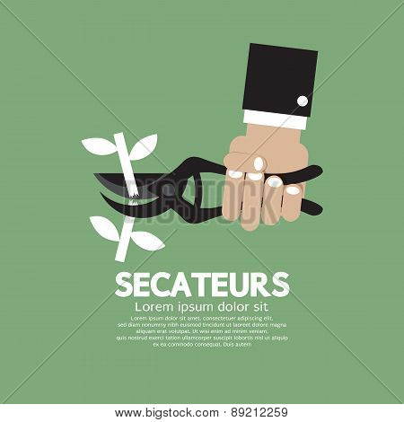 Secateurs Gardening Tool.