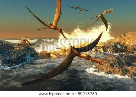 Anhanguera Fishing