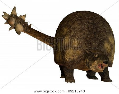 Glyptodont Over White