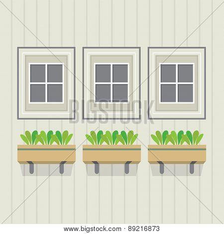 Closed Windows With Pot Plants Below.