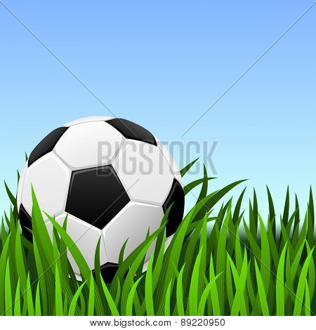 Soccer background -classic soccer ball on the green grass.