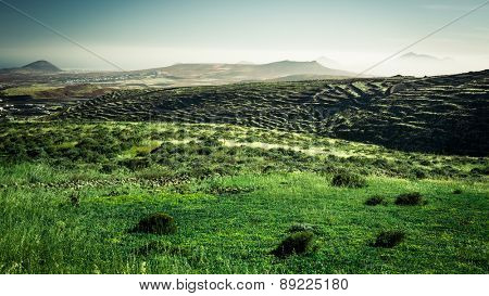 beautiful mountain landscape with green field in Lanzarote, Canary Islands