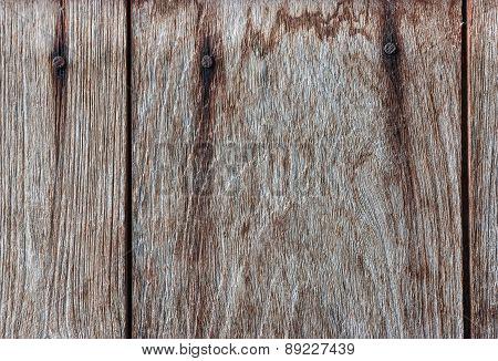Pattern Of Teak Wood.